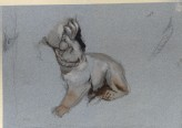 Study of a Lion Cub from Nicola Pisano's Siena Pulpit