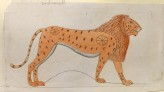 Copy of a Painting of a Lion in the Tomb of Khnumhotep III at Beni Hasan (Lasinio, Carlo, after Giuseppe Angelelli and Alessandro Ricci - Copy of a Painting of a Lion in the Tomb of Khnumhotep III at Beni Hasan)