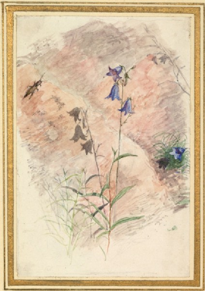 Ruskin's Catalogues